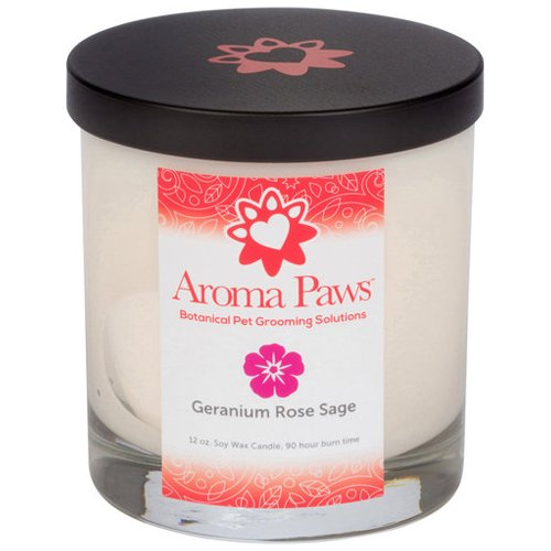 Soy Candle - Candle